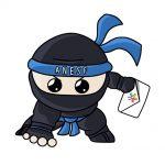ninjanesf