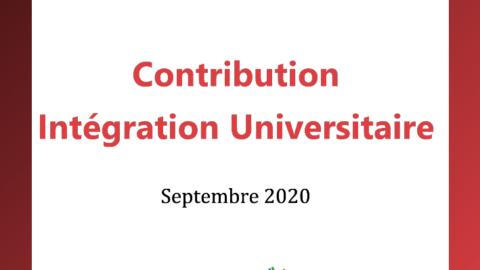 Contribution Intégration Universitaire